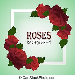 roses, cadre, branches, blanc, coins