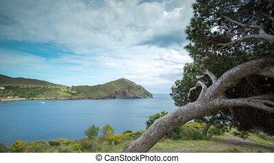 roses coast sea spain mediterranean timelapse - timelapse of...