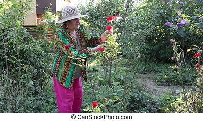 roses, découpage, femme, jardin