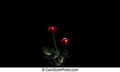 roses, deux
