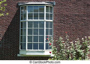 roses, fenêtre