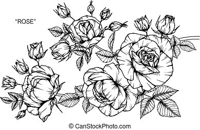 Sweet pea flower drawing and sketch with black and white line art roses flower drawing and sketch with black and white line art mightylinksfo