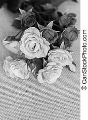 Roses flower in black and white