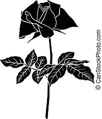 Roses flower silhouette