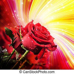 roses, fond, rouges