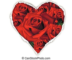 Roses for the paper with a hole in shape of heart