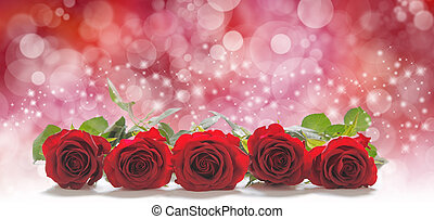 Roses for Valentine's Day - Five red rose heads laid in a...