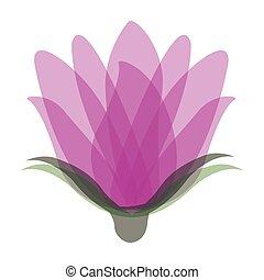 roses icon stock image, vector illustration design