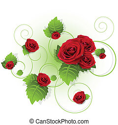 roses - illustration, flowers of the red rose on white...