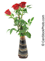 roses in vase - pure white background