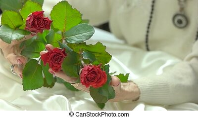Roses in well-goomed hands, slow motion. Aged woman hands...