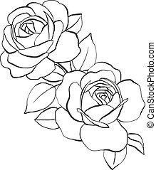 roses, main, feuilles, dessiné, illustration, vecteur