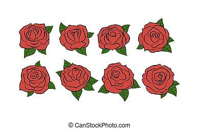 roses., mano, dibujado, rosas, set., vector, illustration.