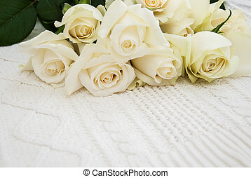roses on a knitted white background