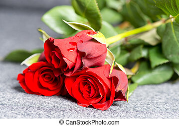 Roses on grave