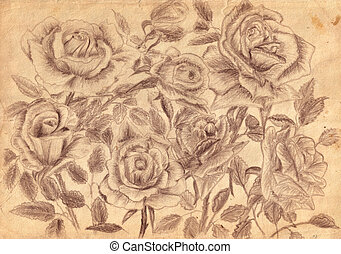 roses on old paper