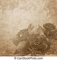 Roses on paper background.