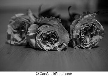 Roses on the floor