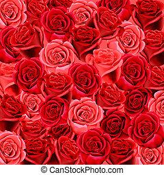 roses, papier peint, arrière-plan rouge