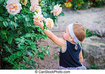 roses, peu, parc, étire, girl