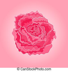 Roses pink simple  symbol  of love