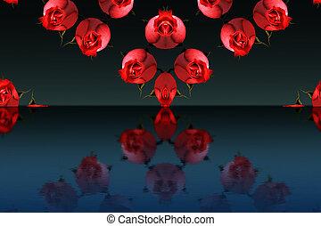 roses, résumé, fond, rouges