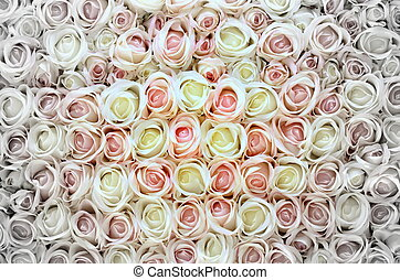roses roses, blanc, arrière-plan.