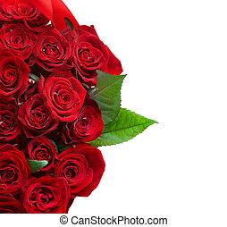 roses rouges, bouquet, frontière