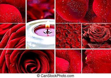 roses, rouges, mosaïque