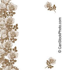 roses, sépia, frontière, monochrome