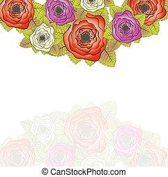 roses., vecteur, ensemble, illustration.
