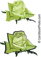 roses, vert