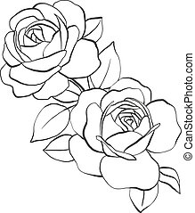 Roses with leaves, hand drawn vector illustration