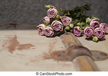Roses wither on the old texture