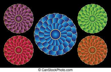 rosettes, que, aparecer, para, ser, girar, devido, para, um,...