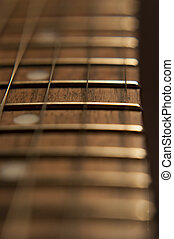 Rosewood Frets - Close Up Shot of the frets on a rosewood...