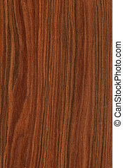 Rosewood (wood texture) - Texture of rosewood (high-detailed...