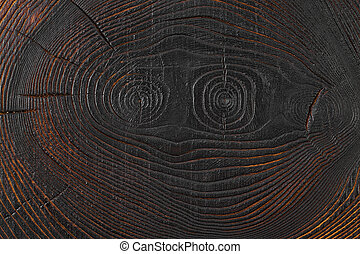 ?ross section log texture. Ash-tree.