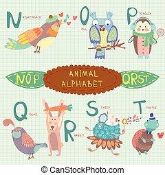 rossignol, coloré, alphabet, n, alphabet., o, lapin, mignon, t s, mouton, conception, manchots, turtle., letters., q, caille, hibou, style., très, r, p