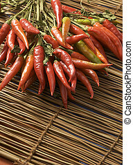 rosso caldo, peperoni