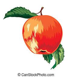 rosso, maturo, mela, con, foglie