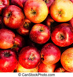 rosso, maturo, mele, maggio, uso, come, frutta estate, fondo
