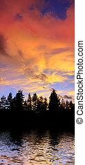 rosso, nubi tramonto, sopra, albero, silhouette, riflettere, acqua, su, il, lago tahoe, california