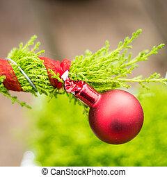 rosso, ornamento, su, sempreverde