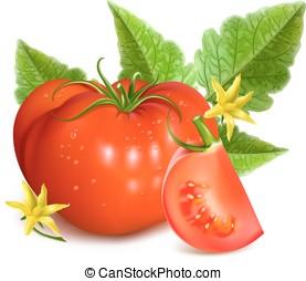 rosso, pomodori maturi