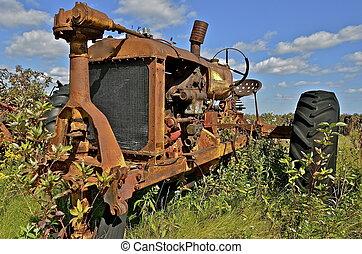 rostig, gammal, traktor, ogräsen