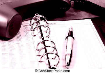 Rosy Outlook - Photo Day Planner, Telephone and Pen With...