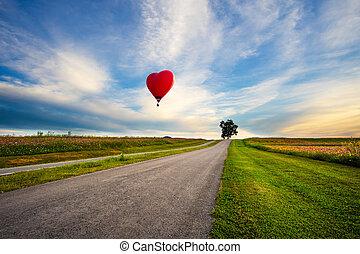 rot heiß, luft, balloon, in, der, form, von, a, herz, aus, kosmos blume, feld, auf, sonnenuntergang
