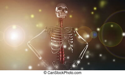 rotate skeleton with flashlight