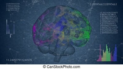 Rotating 360 low polygonal brain 3D model on blue background...